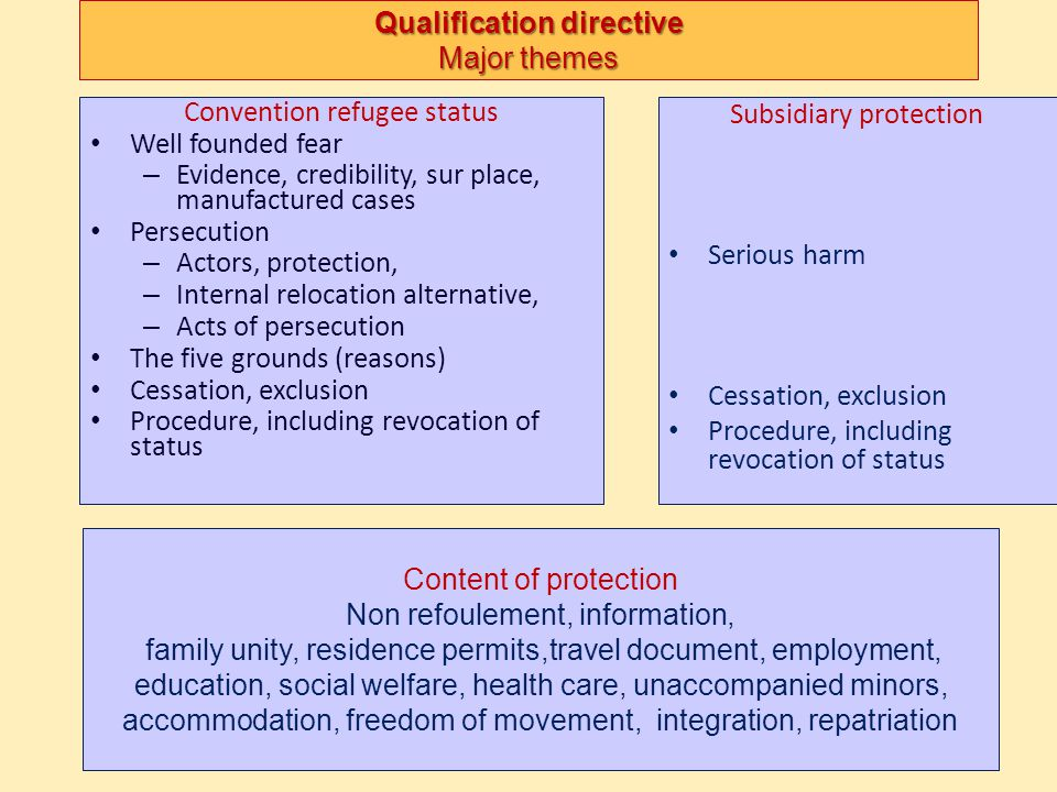 Qualification directive Major themes