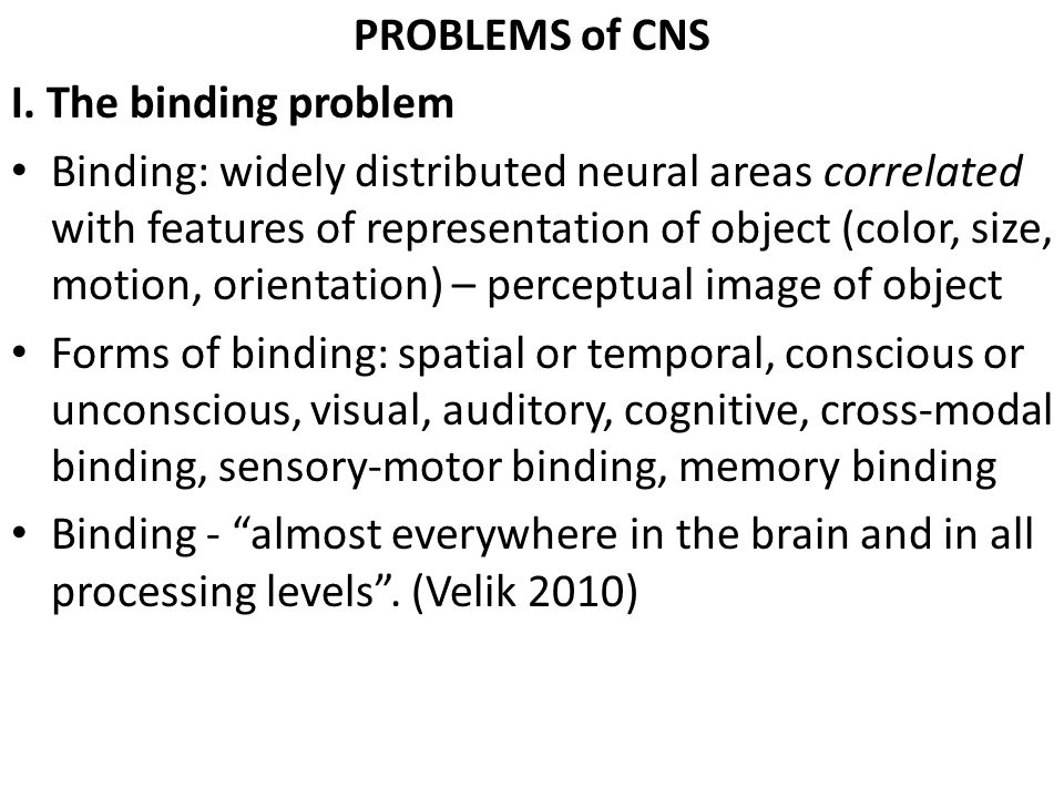 PROBLEMS of CNS I. The binding problem.