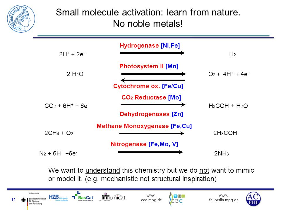 Small molecule activation: learn from nature. No noble metals!