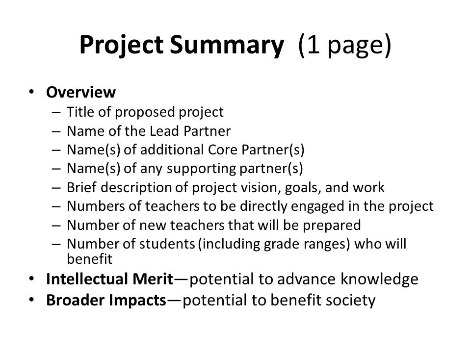 Project Summary (1 page)