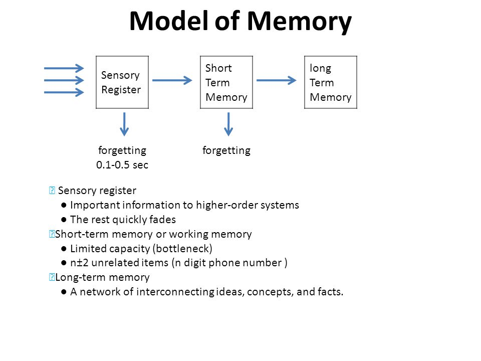 Model of Memory Sensory Register Short Term Memory long Term Memory