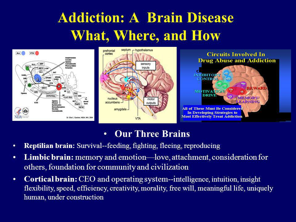 Addiction: A Brain Disease What, Where, and How