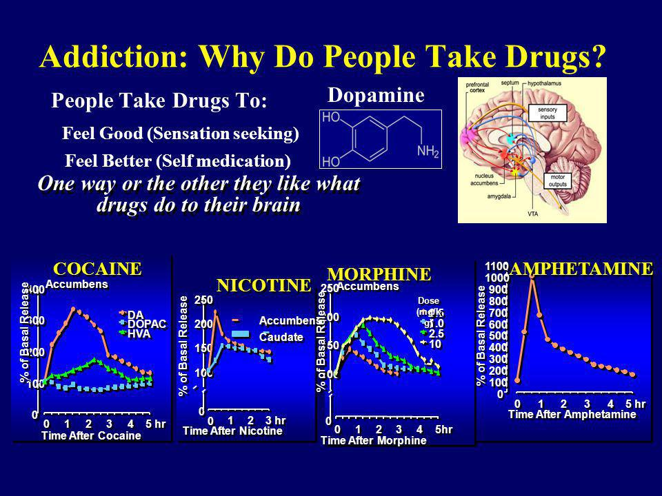 Addiction: Why Do People Take Drugs
