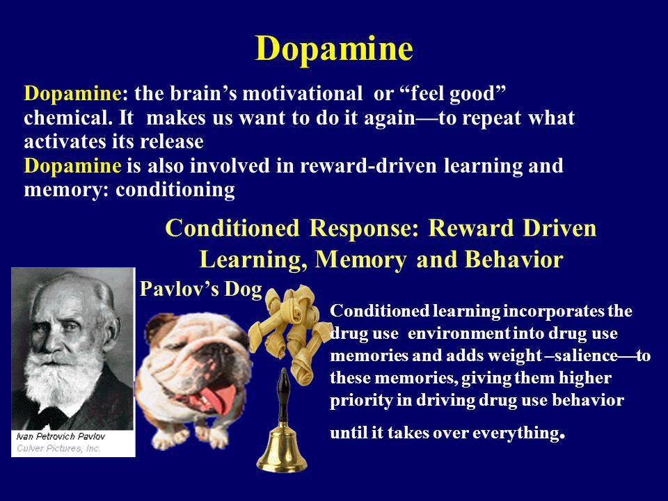 Conditioned Response: Reward Driven Learning, Memory and Behavior