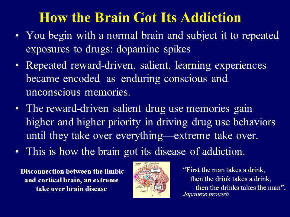 How the Brain Got Its Addiction