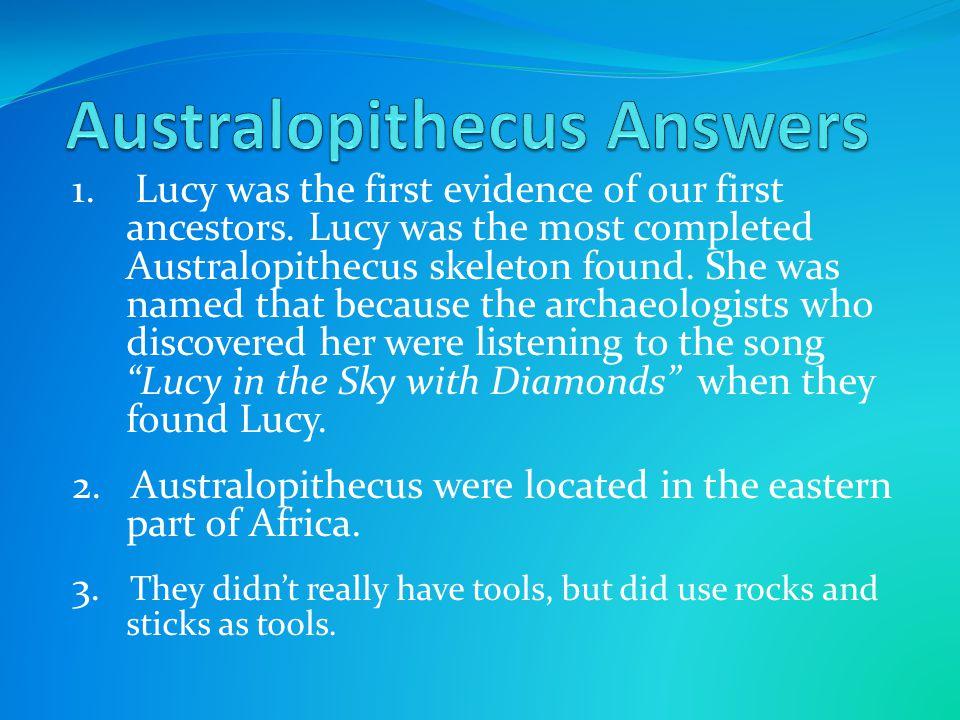 Australopithecus Answers