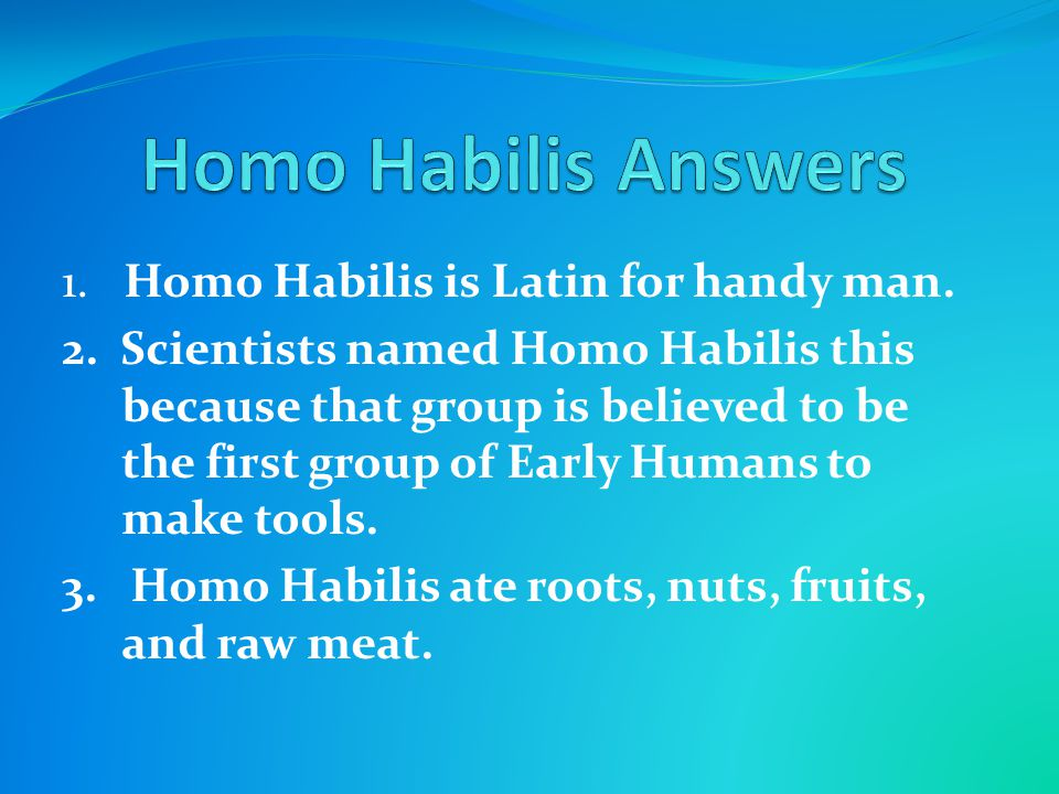 Homo Habilis Answers 1. Homo Habilis is Latin for handy man.