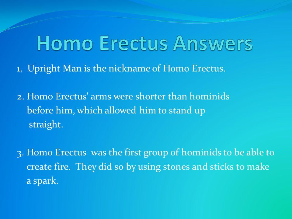 Homo Erectus Answers 1. Upright Man is the nickname of Homo Erectus.