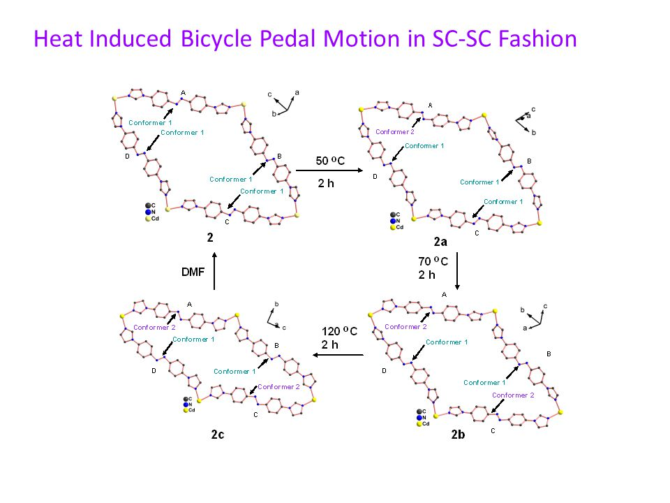 Heat Induced Bicycle Pedal Motion in SC-SC Fashion
