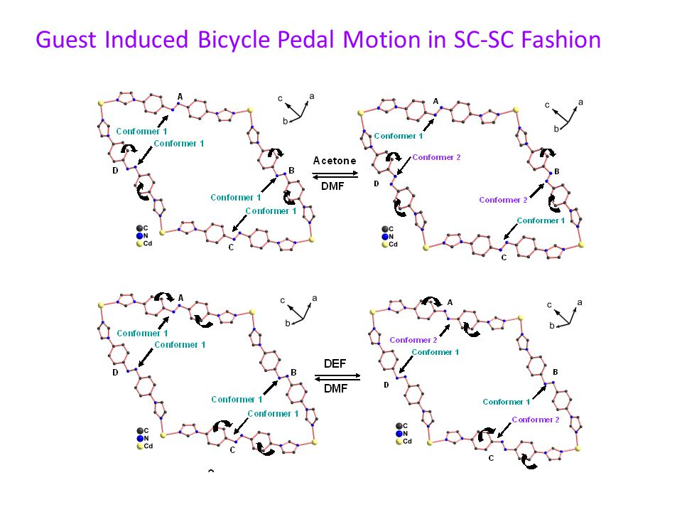 Guest Induced Bicycle Pedal Motion in SC-SC Fashion