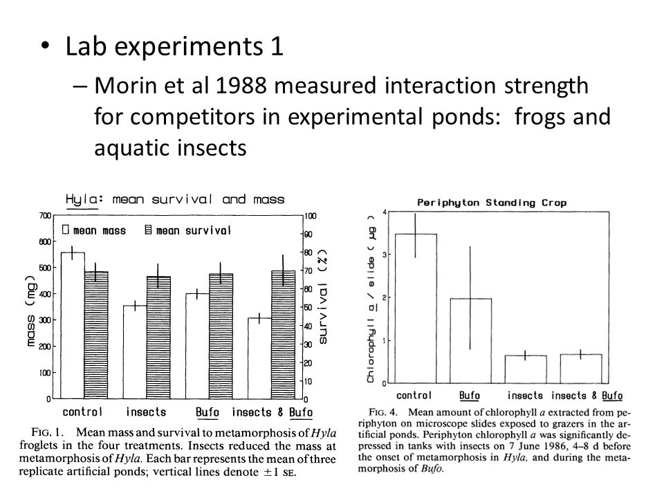 Lab experiments 1 Morin et al 1988 measured interaction strength for competitors in experimental ponds: frogs and aquatic insects.
