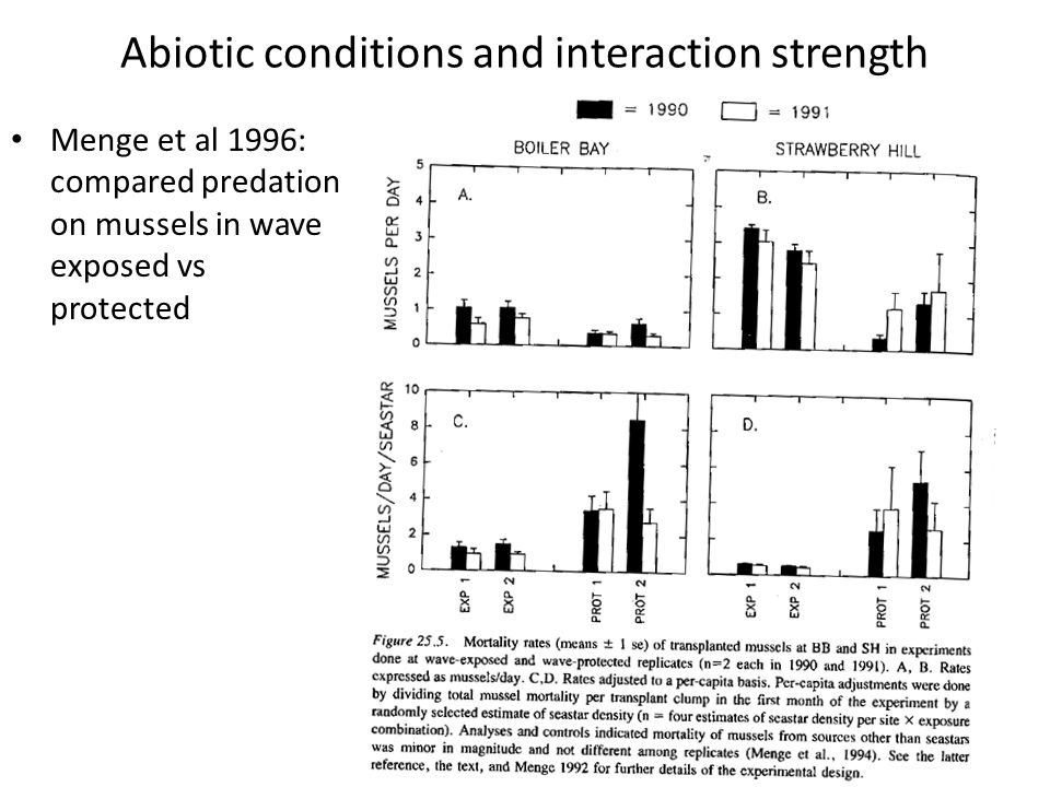 Abiotic conditions and interaction strength