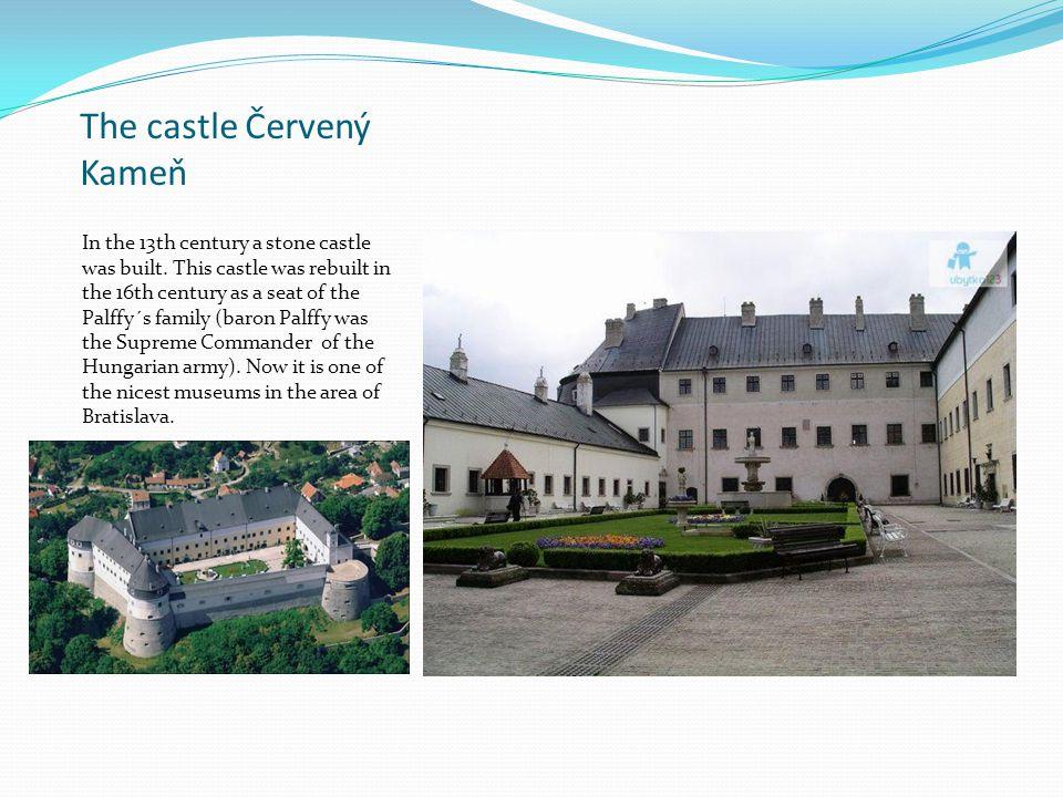 The castle Červený Kameň