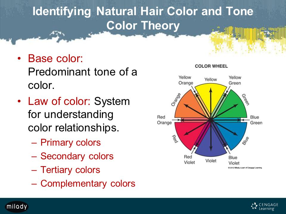Understanding Color Theory For Hair Home Design Home Design Ideas