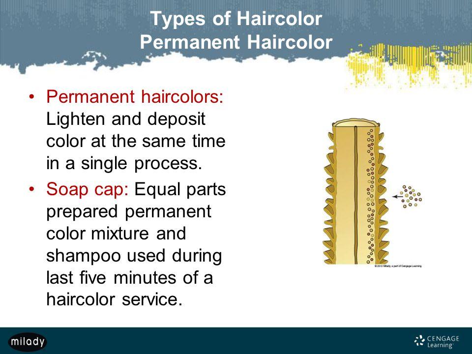 Types of Haircolor Permanent Haircolor
