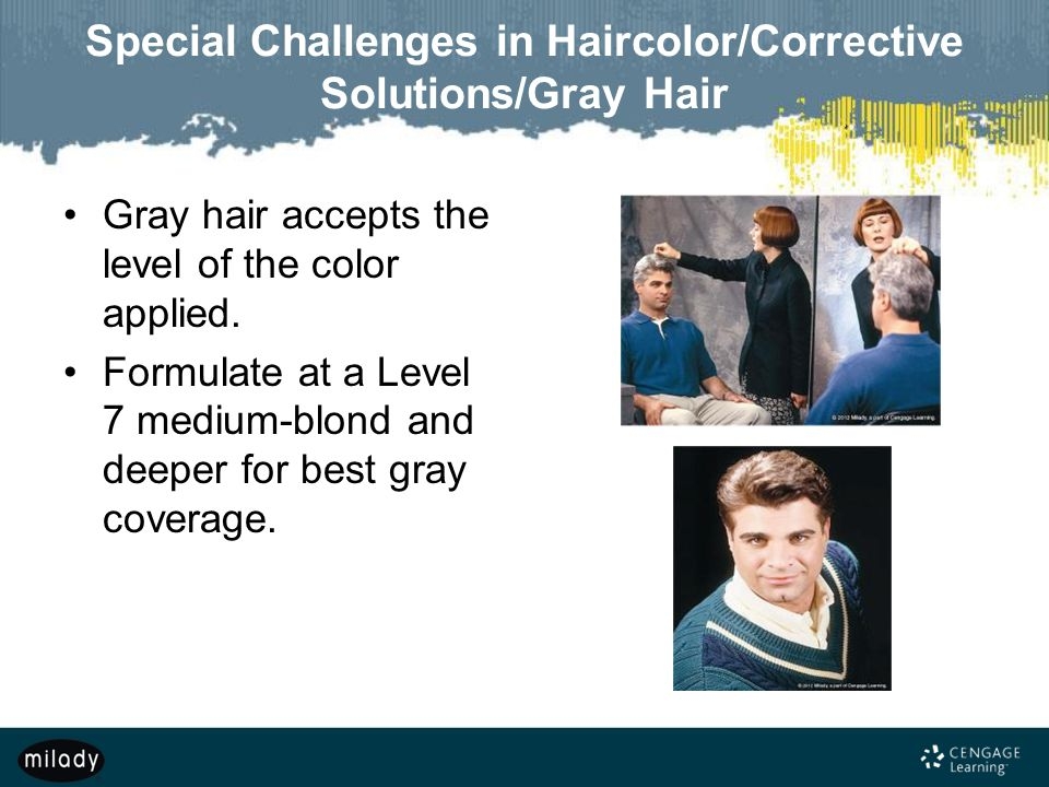 Special Challenges in Haircolor/Corrective Solutions/Gray Hair