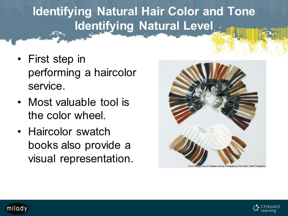 Identifying Natural Hair Color and Tone Identifying Natural Level