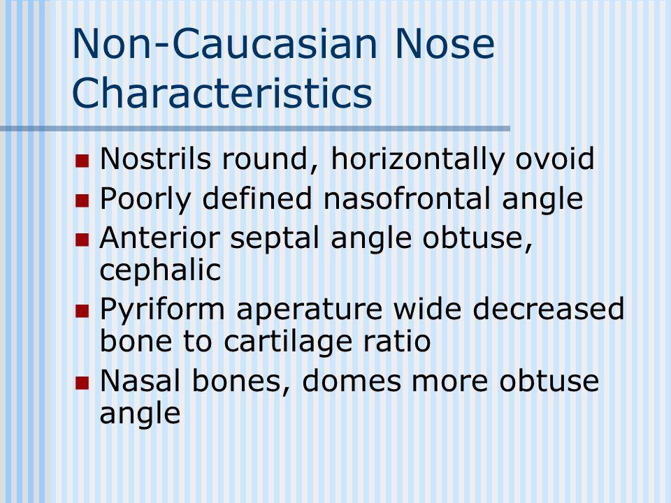 Non-Caucasian Nose Characteristics