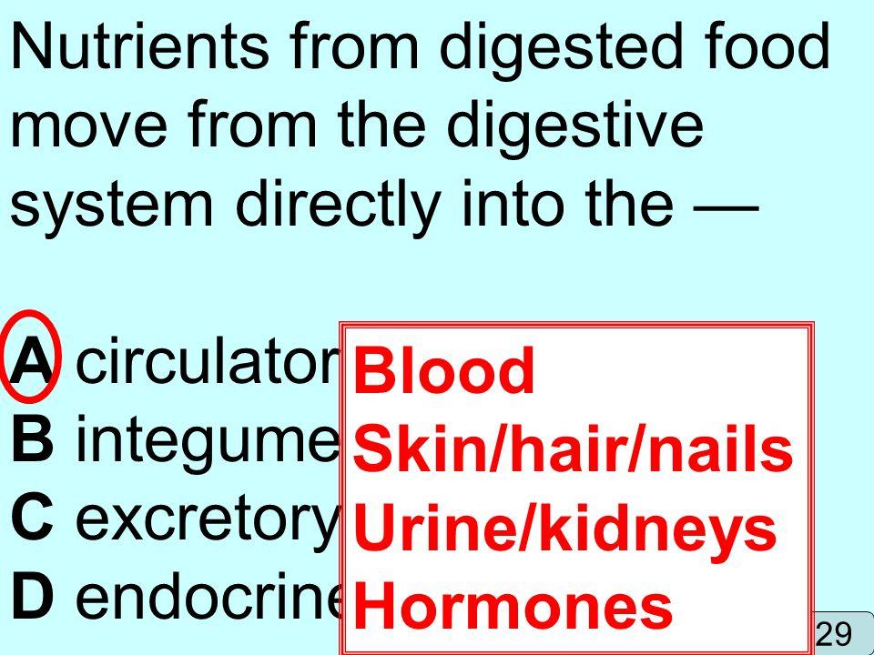 B integumentary system C excretory system D endocrine system Blood