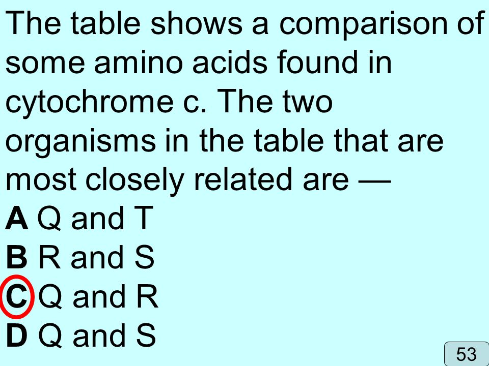 The table shows a comparison of some amino acids found in cytochrome c