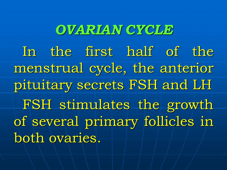 OVARIAN CYCLE In the first half of the menstrual cycle, the anterior pituitary secrets FSH and LH.