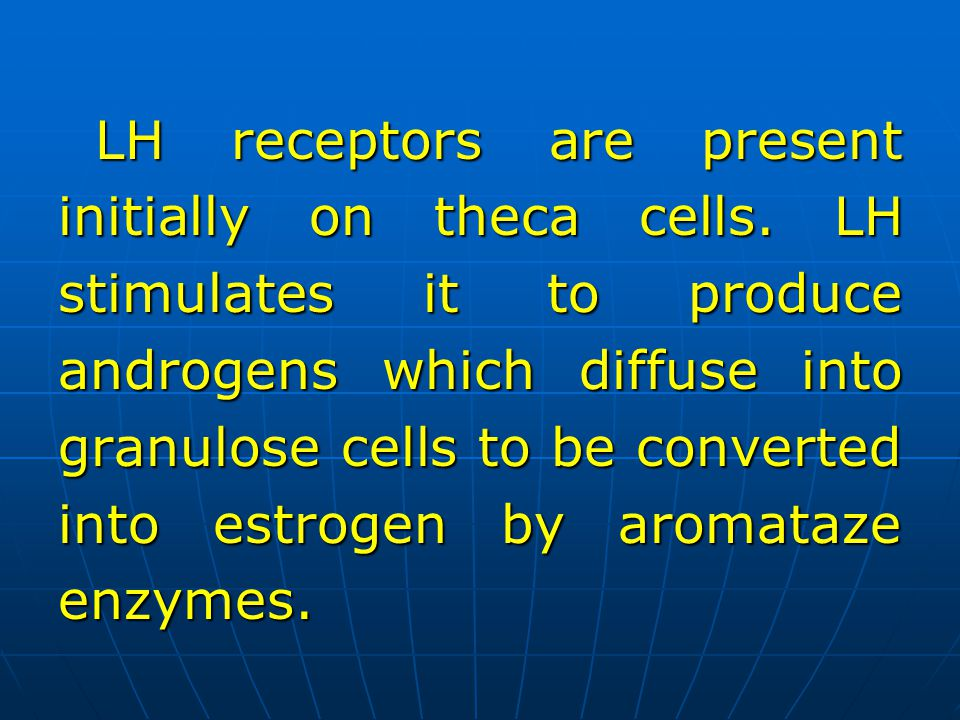 LH receptors are present initially on theca cells