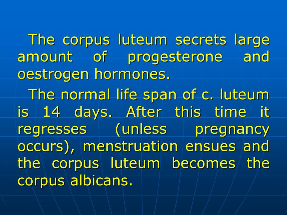 The corpus luteum secrets large amount of progesterone and oestrogen hormones.