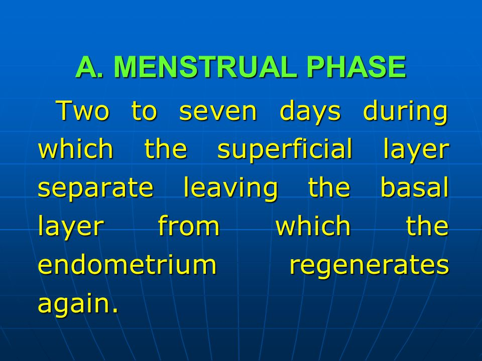 A. MENSTRUAL PHASE