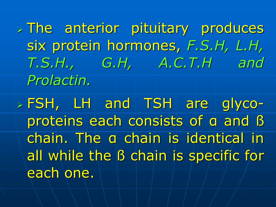 The anterior pituitary produces six protein hormones, F. S. H, L. H, T