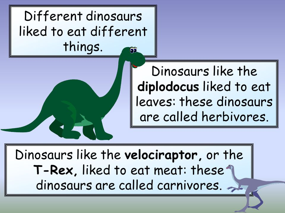 Different dinosaurs liked to eat different things.
