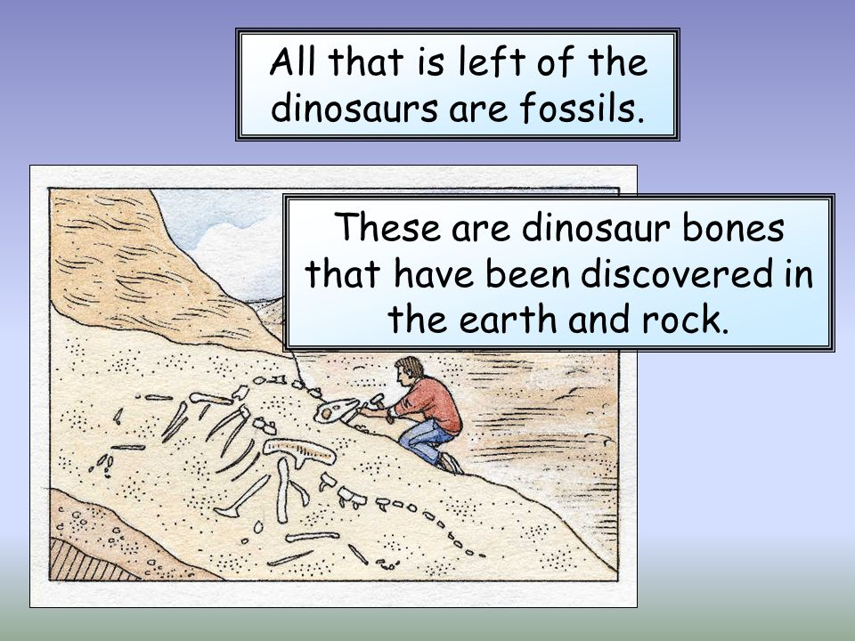 All that is left of the dinosaurs are fossils.