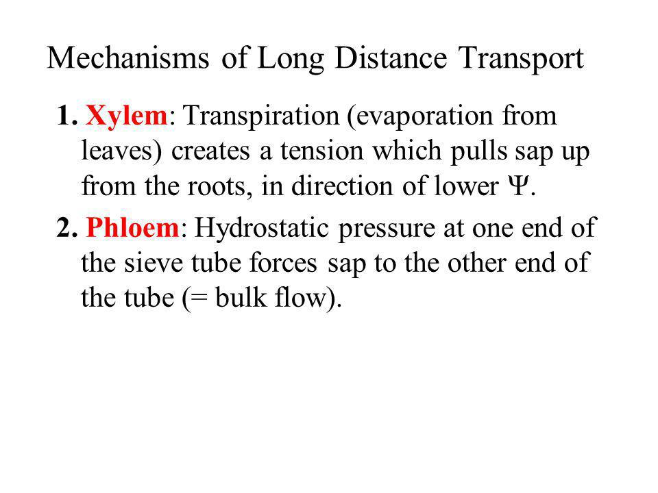 Mechanisms of Long Distance Transport