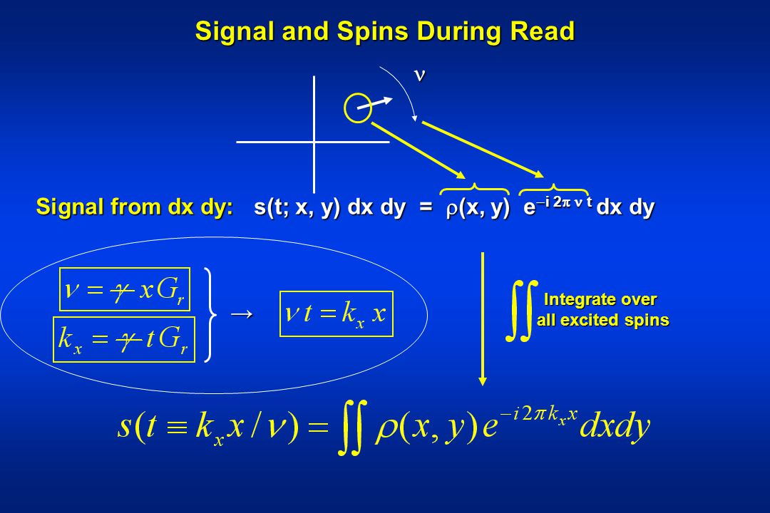 Signal and Spins During Read