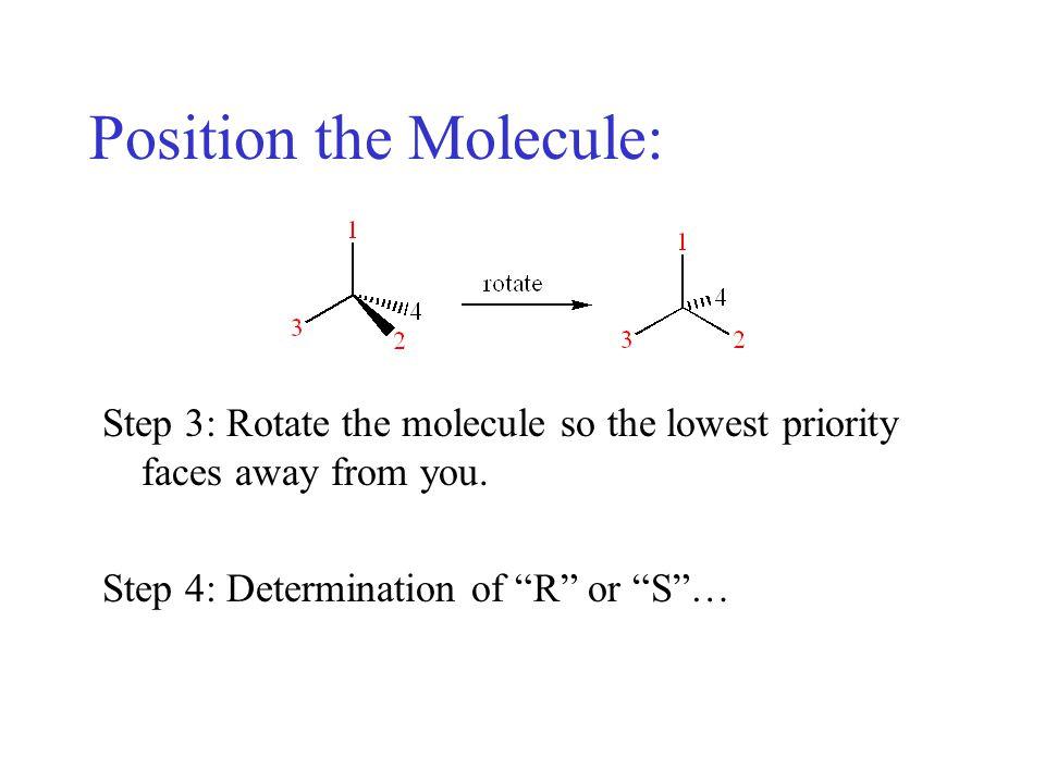 Position the Molecule: