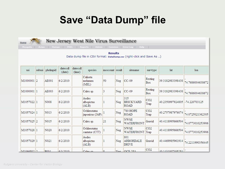 Save Data Dump file