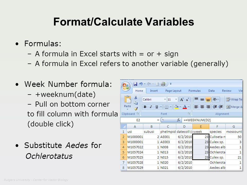 Format/Calculate Variables
