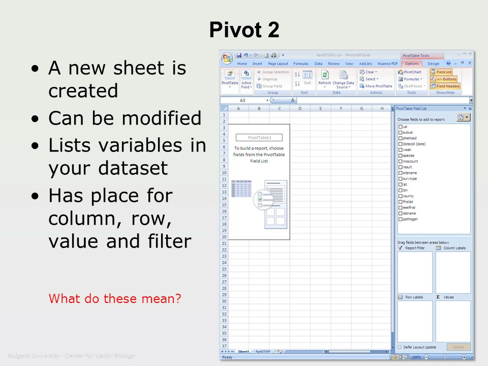 Pivot 2 A new sheet is created Can be modified