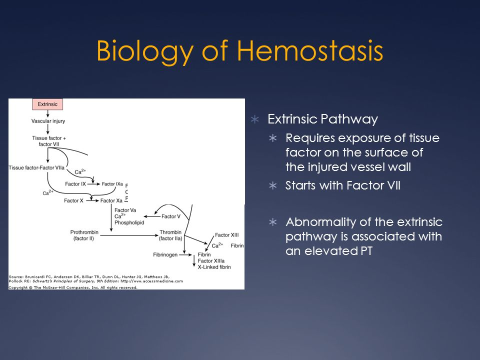Biology of Hemostasis Extrinsic Pathway