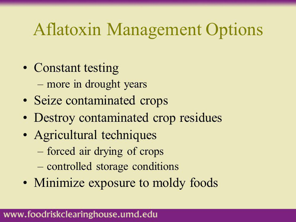 Aflatoxin Management Options