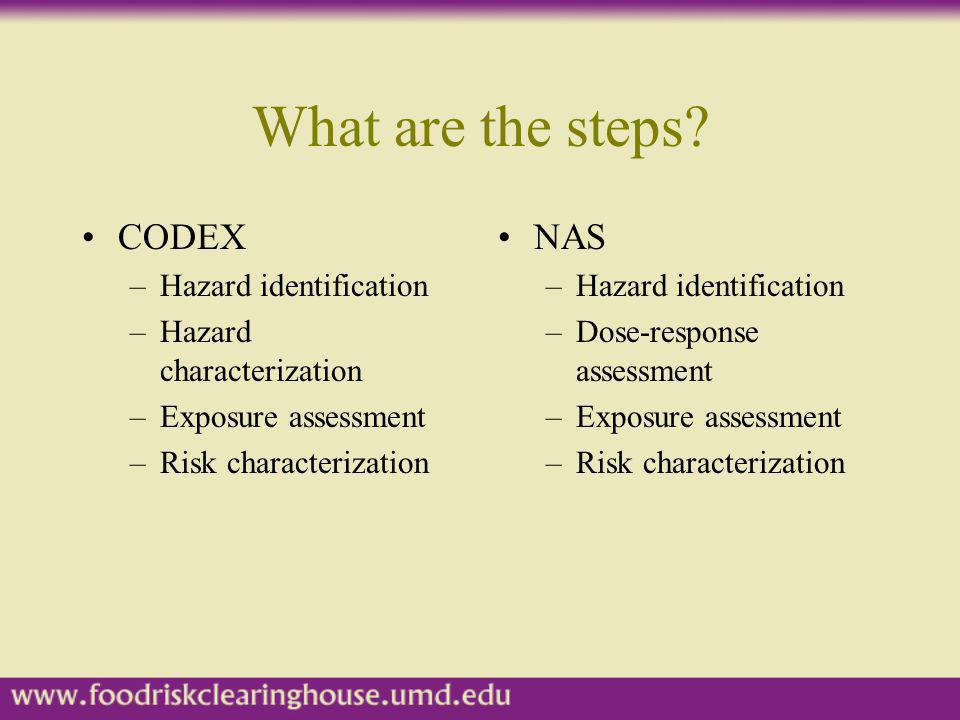 What are the steps CODEX NAS Hazard identification