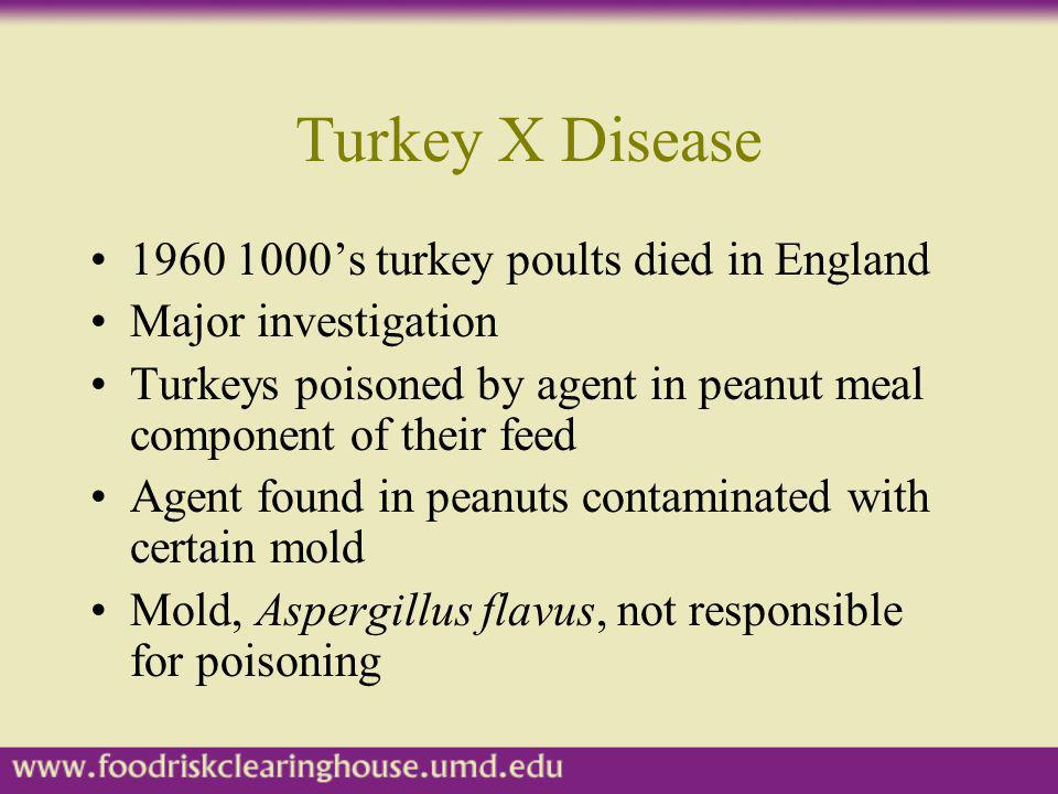 Turkey X Disease 1960 1000's turkey poults died in England