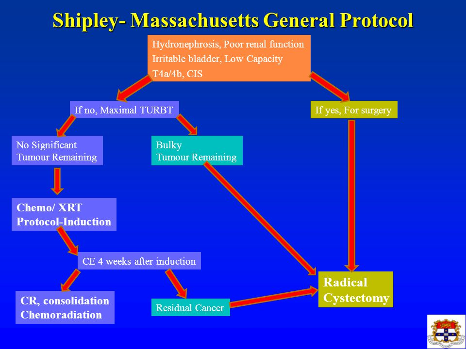 Shipley- Massachusetts General Protocol