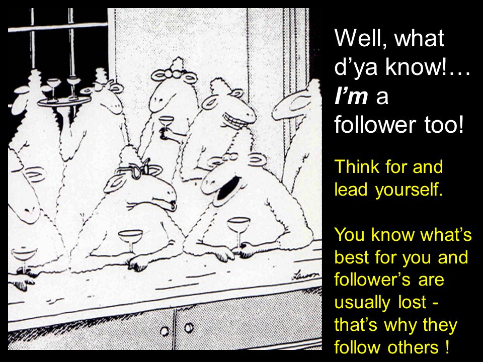 Well, what d'ya know!… I'm a follower too!