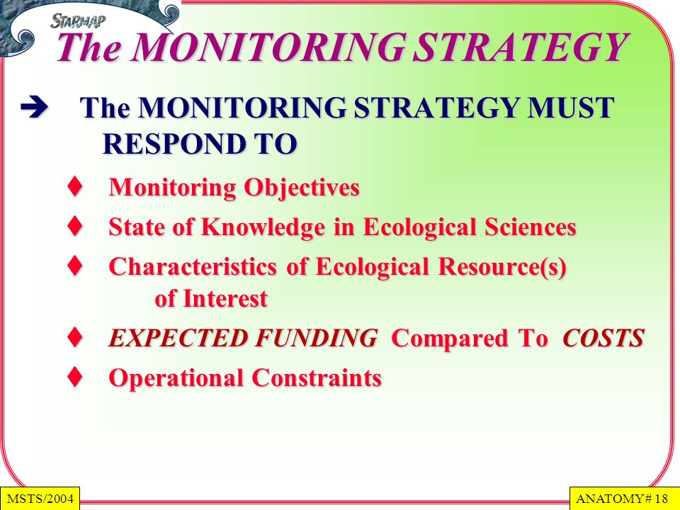 The MONITORING STRATEGY