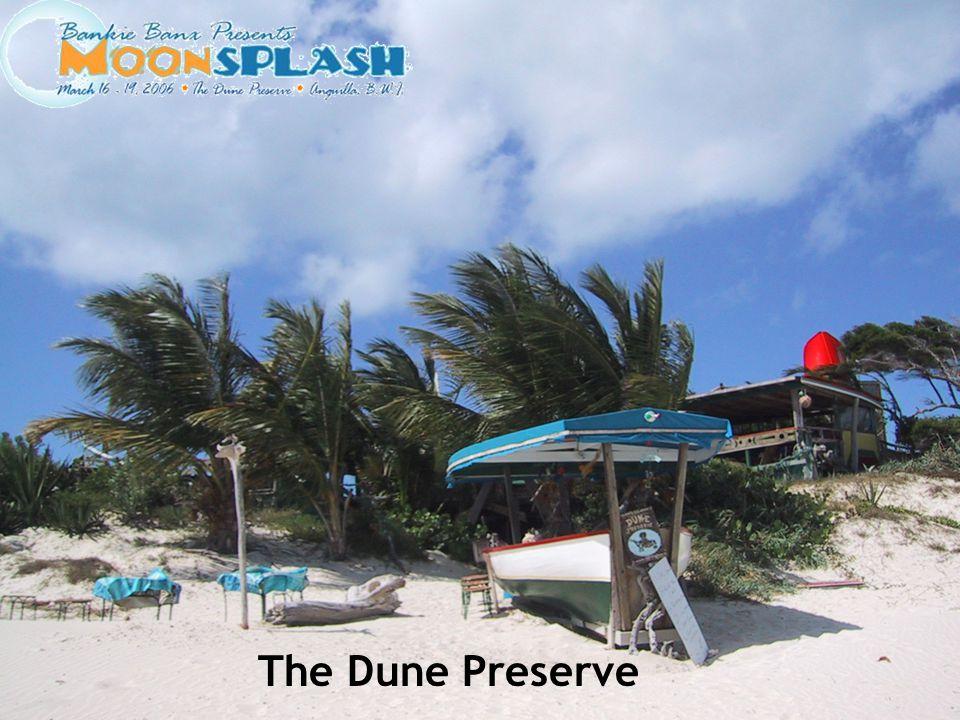The Dune Preserve