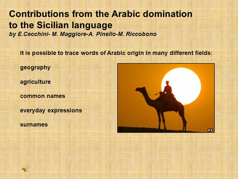Contributions from the Arabic domination to the Sicilian language by E
