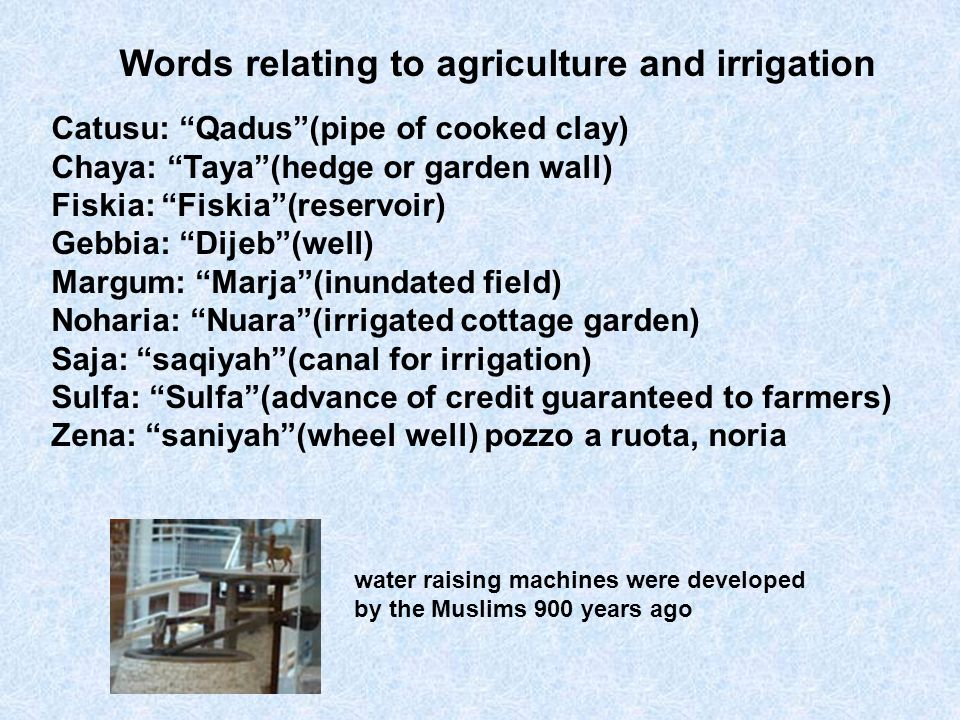 Words relating to agriculture and irrigation