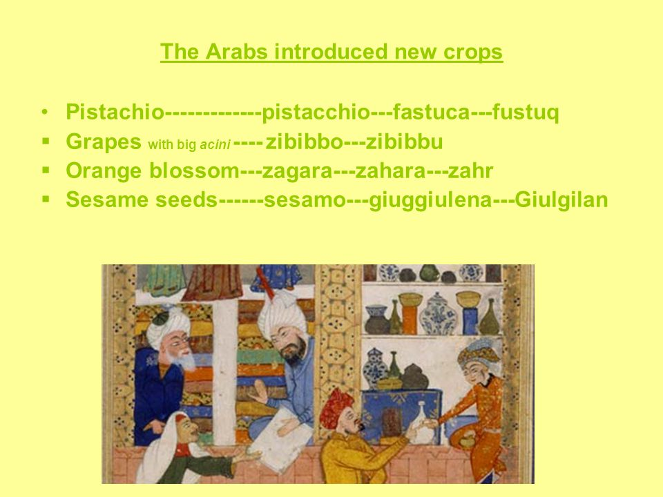 The Arabs introduced new crops