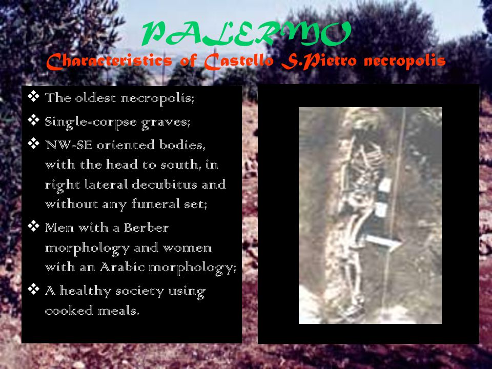 PALERMO Characteristics of Castello S.Pietro necropolis