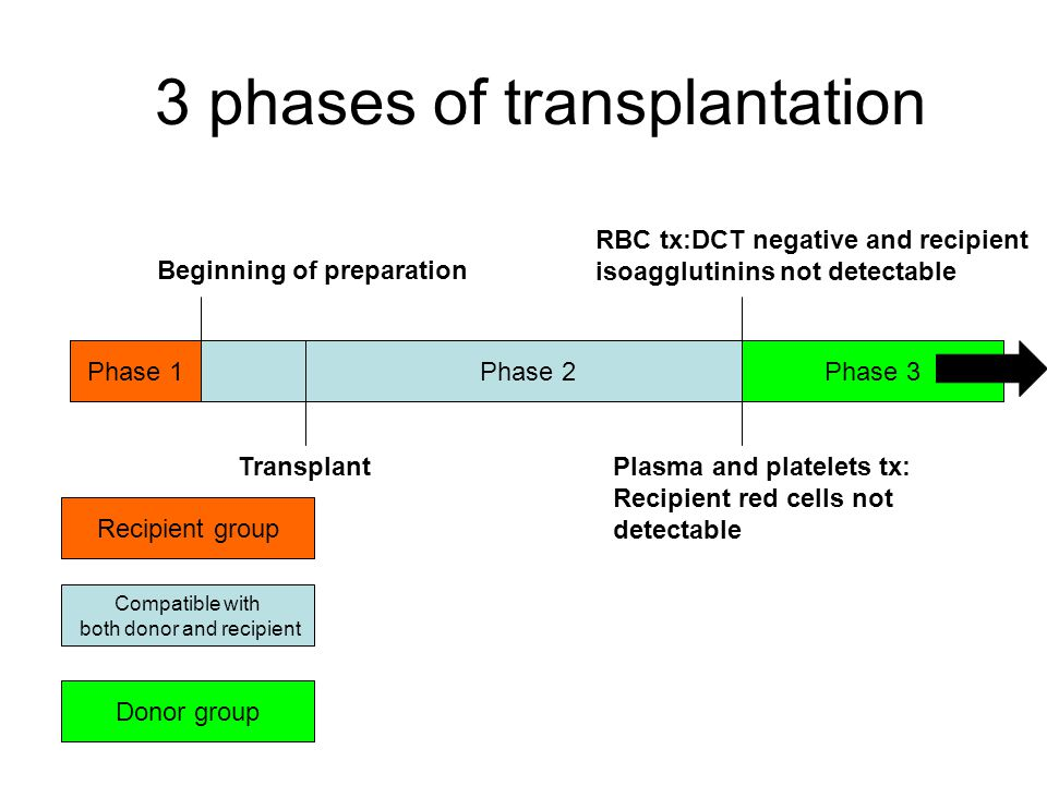3 phases of transplantation